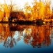 Horgásztó ősszel