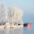 Horgásztó télen