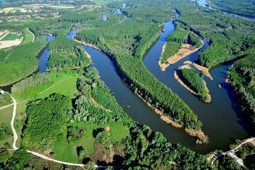 Dunakiliti bős
